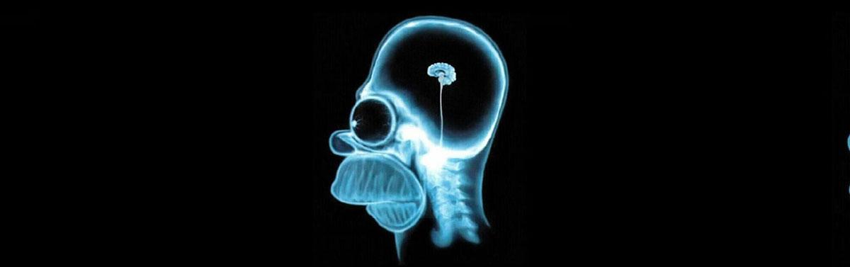 homer-simpson-brain-rect